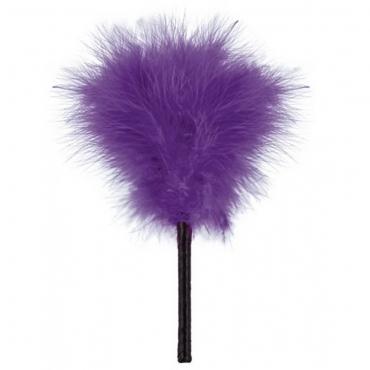 plumeau violet